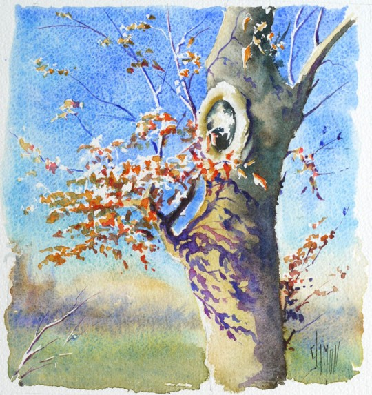 optimisation-aquarelle-ombre-arbre-final-540x573.jpg