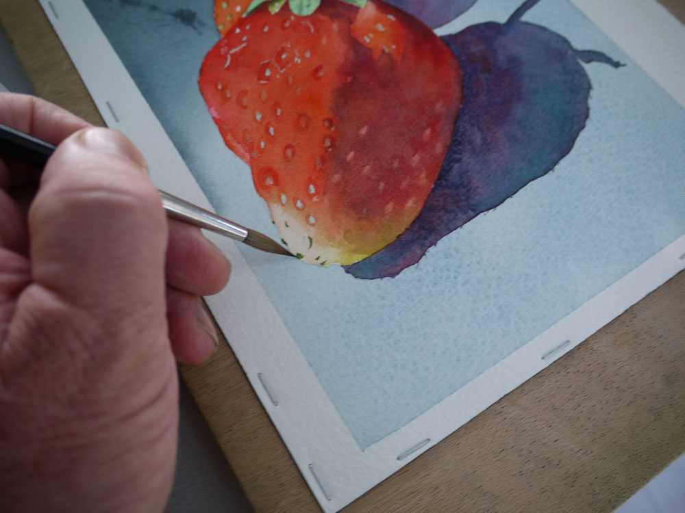 aquarelle-fraise-akenes-29