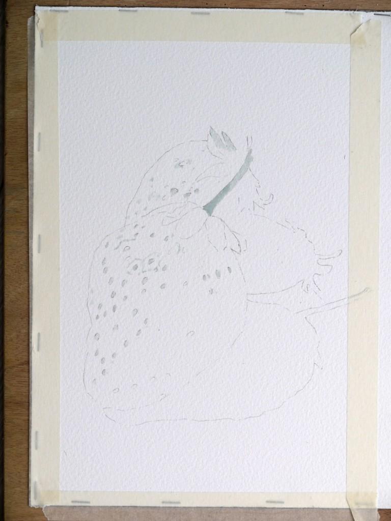 aquarelle-fraise-drawing-gum-03