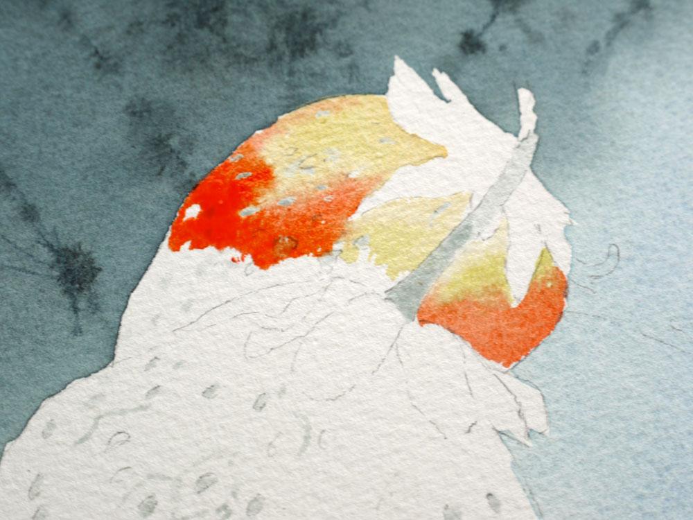 aquarelle-fraise-haut-premiere-fraise-09
