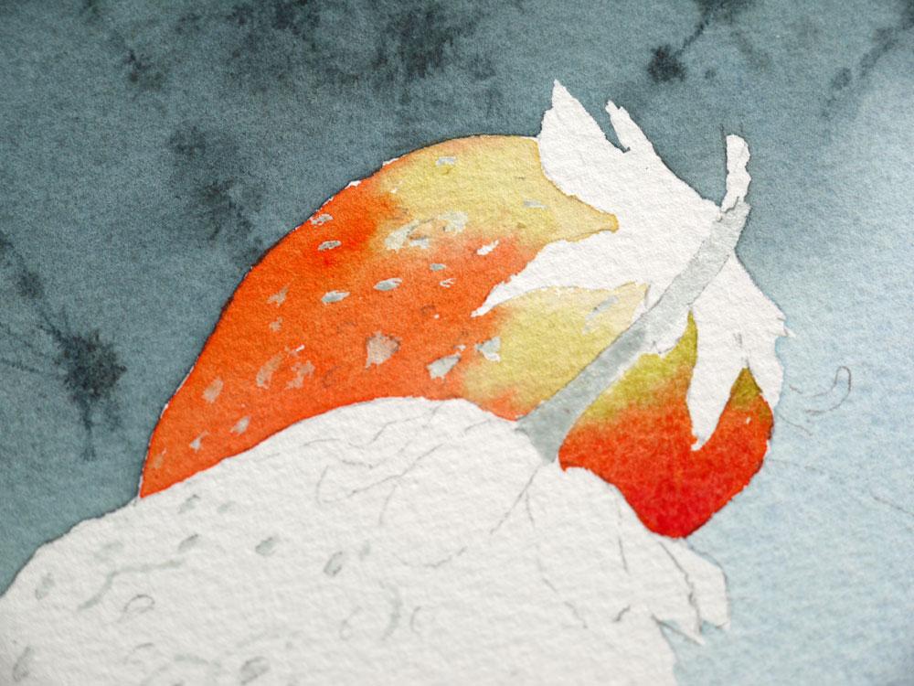 aquarelle-fraise-haut-premiere-fraise-10