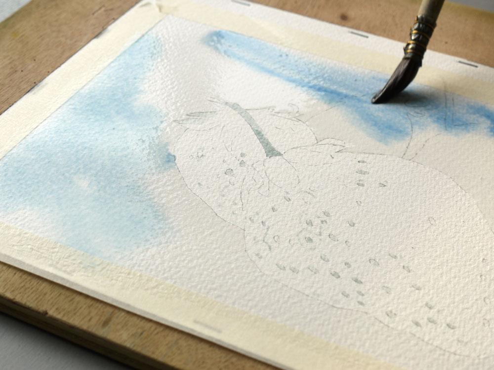 aquarelle-fraise-lavis-bleu-gris-05