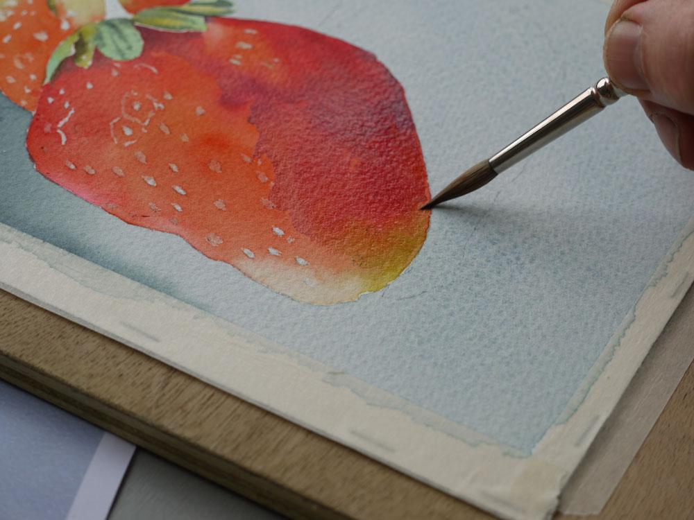 aquarelle-fraise-ombre-19