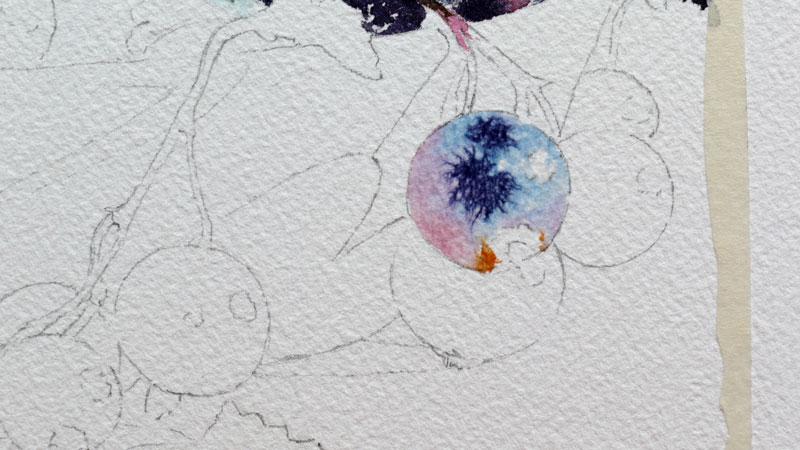 11-aquarelle-cassis-groseille