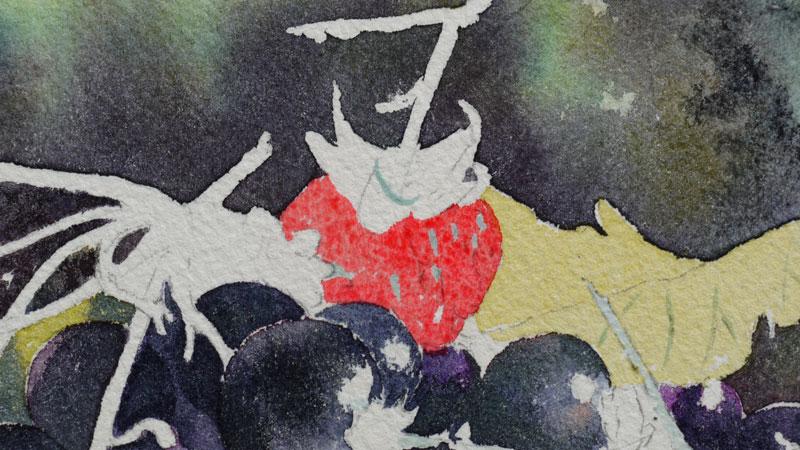 24-aquarelle-cassis-groseille