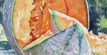 thumbnail-aquarelle-joel-simon-le-melon